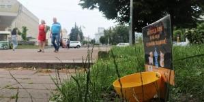 Житомирян закликають встановлювати поїлки для бездомних тварин