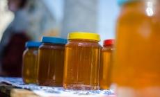 У Житомирі проведуть ярмарок продукції бджолярства