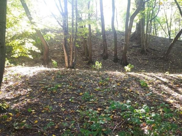 На Житомирщині археологи знайшли місто часів Київської Русі