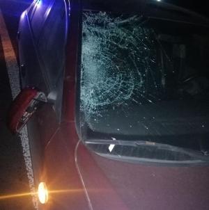 Під Житомиром у ДТП загинув житель Коростишівського району
