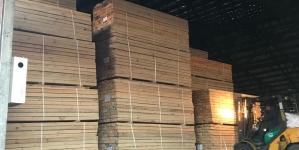 СБУ викрила організоване угруповання на незаконному експорті деревини до Азії на мільйони гривень