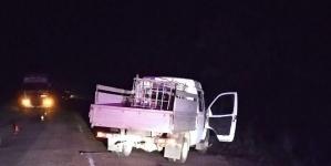 Поліція розслідує смертельну ДТП в Овруцькому районі