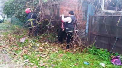 Рятувальники вивільнили жінку, яка застрягла на паркані між деревами