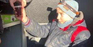 Хлопчика, який пропав у лісі під Житомиром, знайшли