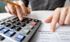 Лісгоспи Житомирщини сплатили минулоріч майже 800 мільйонів податків