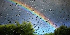 До кінця тижня в Житомирі прогнозується дощ