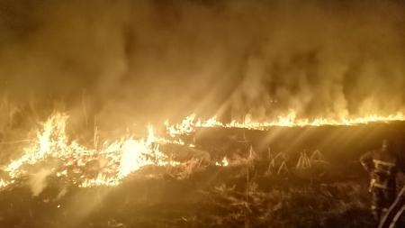 Впродовж минулої доби пожежниками було ліквідовано 11 загорян сухої трави