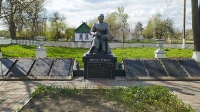 Останки 100 солдат та офіцерів, які загинули у 1941 році, поховають у селі на Житомирщині