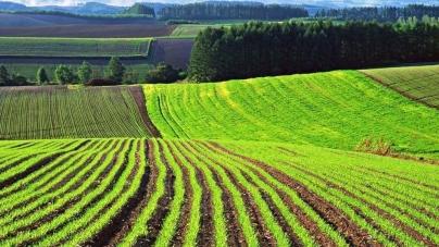 У поточному році атовці Житомирщини отримали понад 600 земельних ділянок
