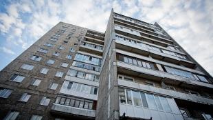 У прокуратурі розповіли про хід справи житомирянина, який викинув з балкона цуценя