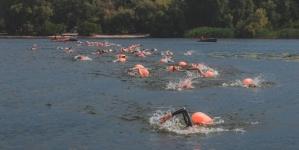 Вперше Чемпіонат України з плавання на відкритій воді відбудеться у Житомирі