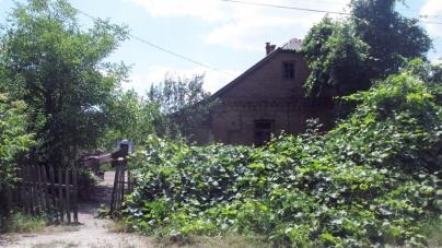 У Бердичівському районі жінка вбила співмешканця і намагалася це приховати