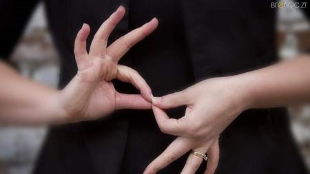 В обласній бібліотеці для юнацтва відкриють школу жестової мови